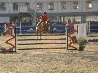 Domaine Equestre Des Grands Pins