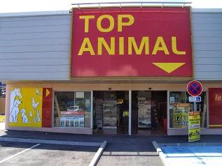 Top Animal