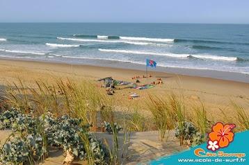 ECOLE DE SURF de la COTE SAUVAGE