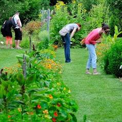 aux Plantes parfumées la Bouichère Garden