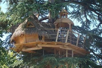 Sur un arbre perché - cabane dans les arbres